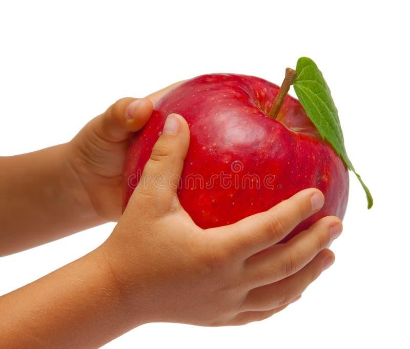 jabłczana dzieci ręk czerwień s obraz royalty free
