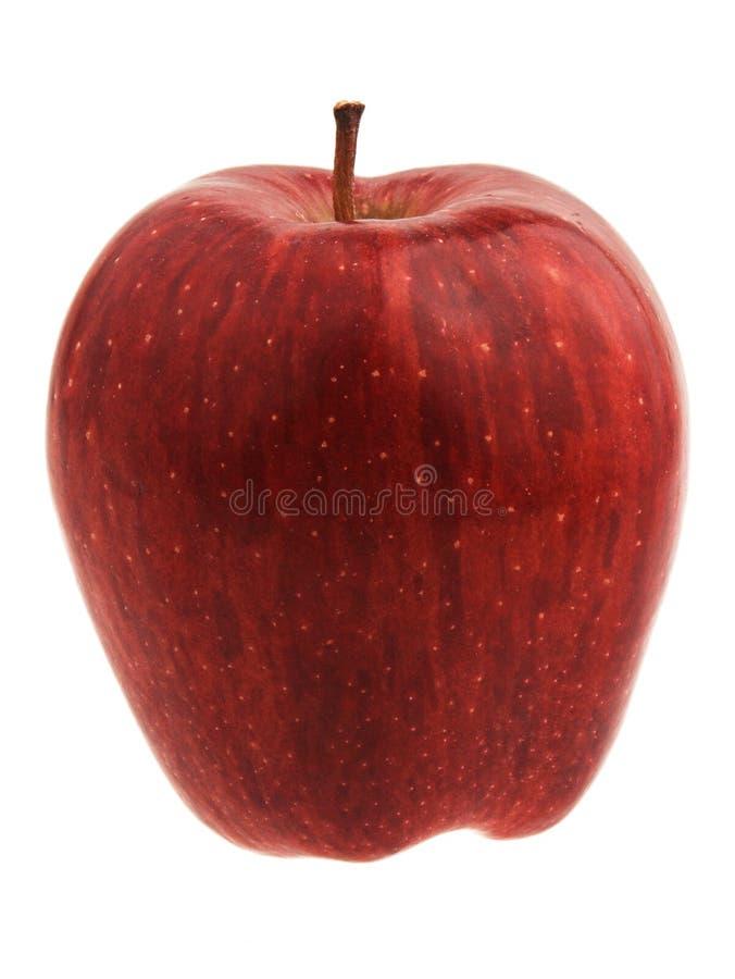 jabłczana przepyszne czerwone. obrazy royalty free