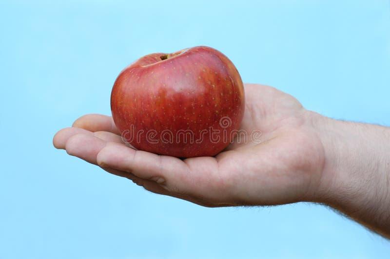 jabłczana ręka obrazy stock