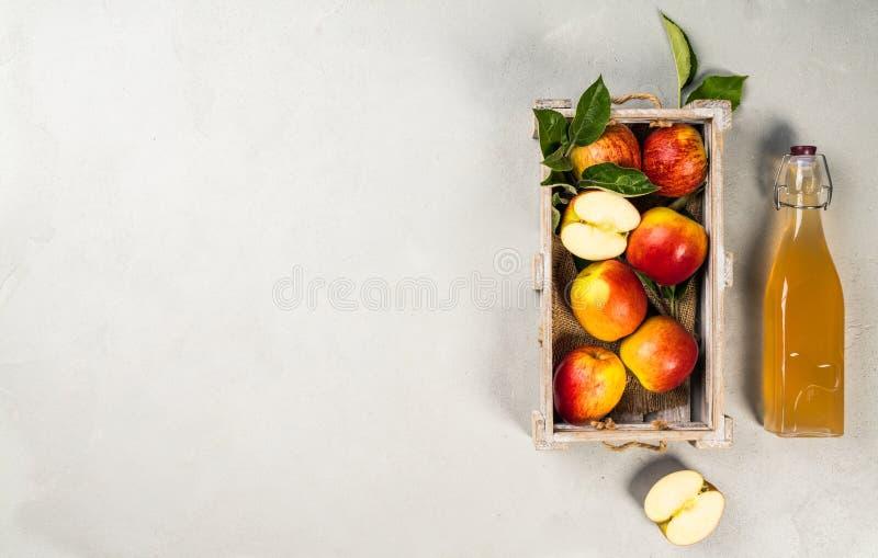 Jabłczanego cydru ocet i świezi jabłka zdjęcia royalty free