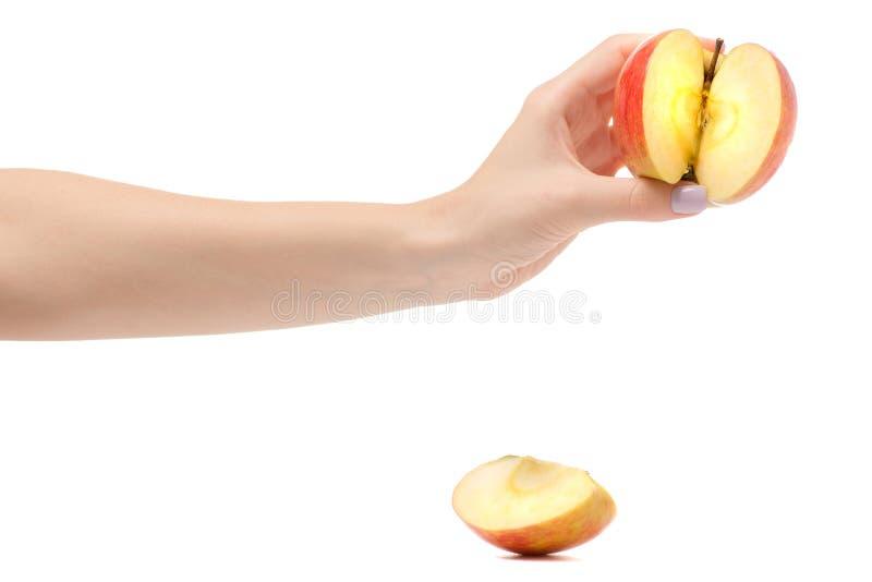 Jabłczanego czerwonego odosobnienia żeńska ręka obrazy royalty free