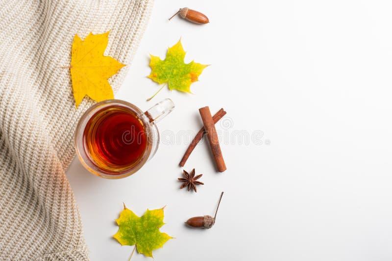 jabłczanego jesień świeczek składu susi liść target2422_0_ wazę Gorąca herbata, trykotowa koc i jesień liście, Mieszkanie nieatut obrazy stock