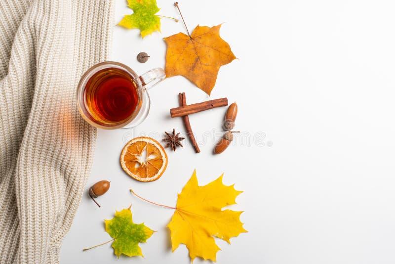 jabłczanego jesień świeczek składu susi liść target2422_0_ wazę Gorąca herbata, trykotowa koc i jesień liście, Mieszkanie nieatut zdjęcia stock