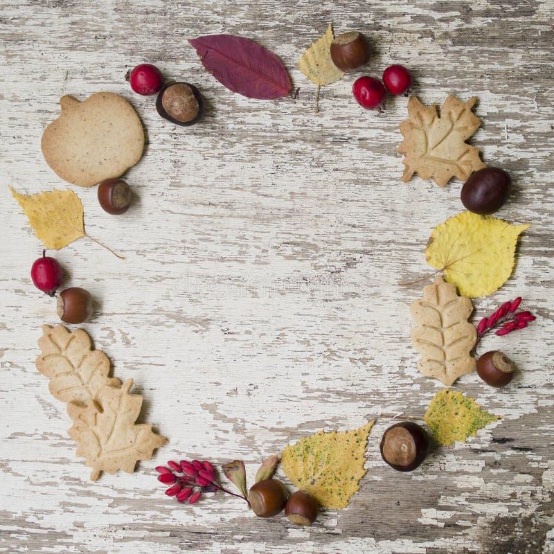 jabłczanego jesień świeczek składu susi liść target2422_0_ wazę Wianek robić susi liście, kasztany, acorns, głogu i berberysu pos zdjęcie royalty free