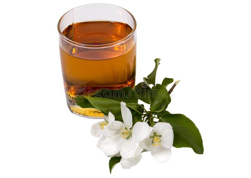 Jabłczanego soku wciąż życie obrazy stock