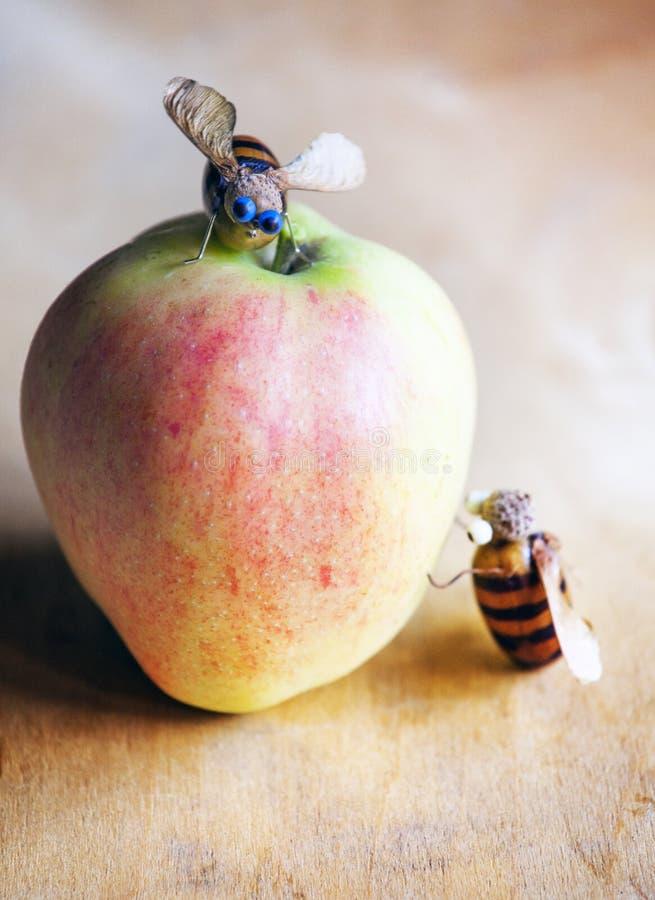 Jabłczanej acorn pszczoły drewniany stół zdjęcie royalty free