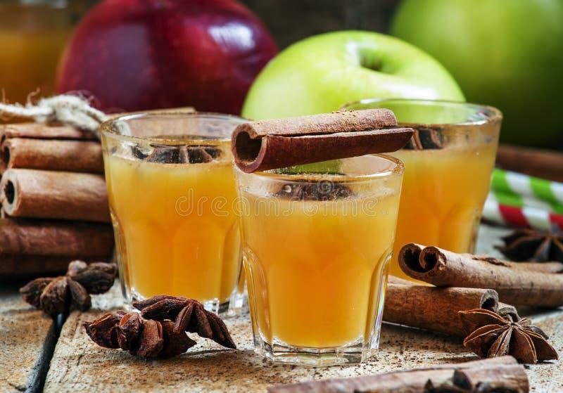 Jabłczany cydr z cynamonem i anyżem, selekcyjna ostrość zdjęcie stock
