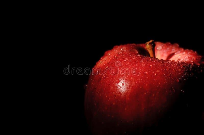 jabłczany czarny galowy królewski zdjęcia stock