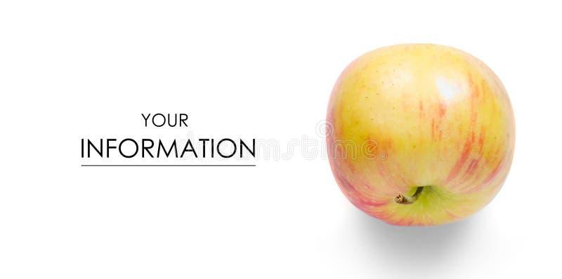Jabłczany owocowy czerwień wzór obraz stock