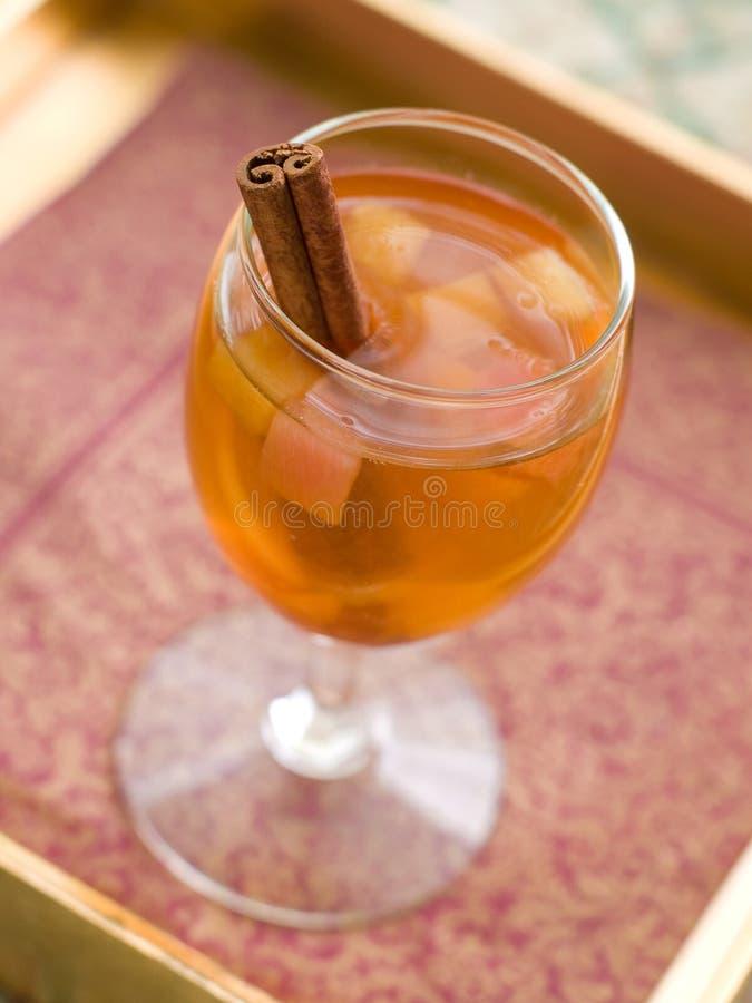 Jabłczany wino lub cydr obraz royalty free