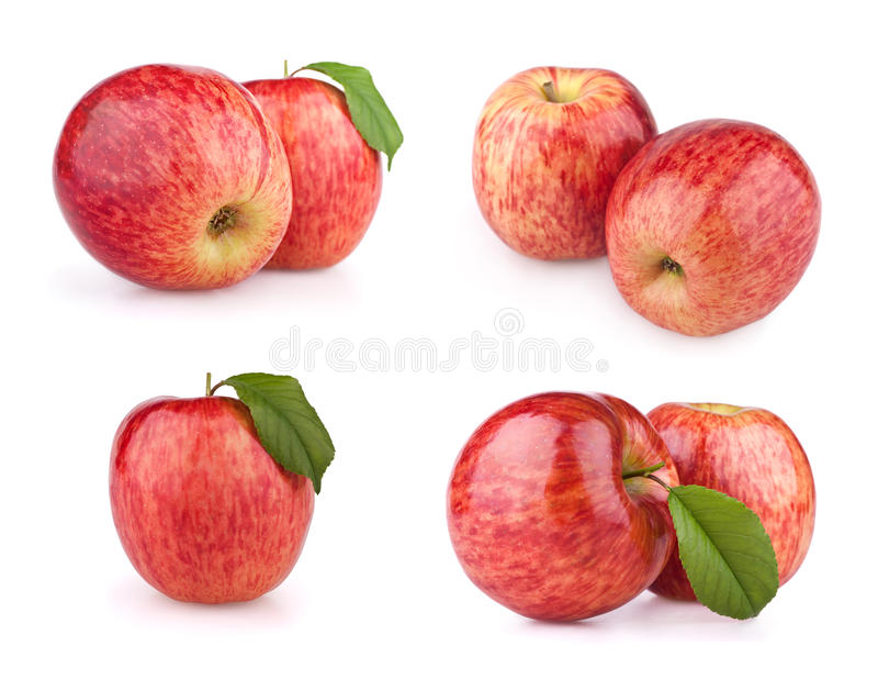 jabłczanych owoc odosobniony czerwony ustalony biel zdjęcie royalty free