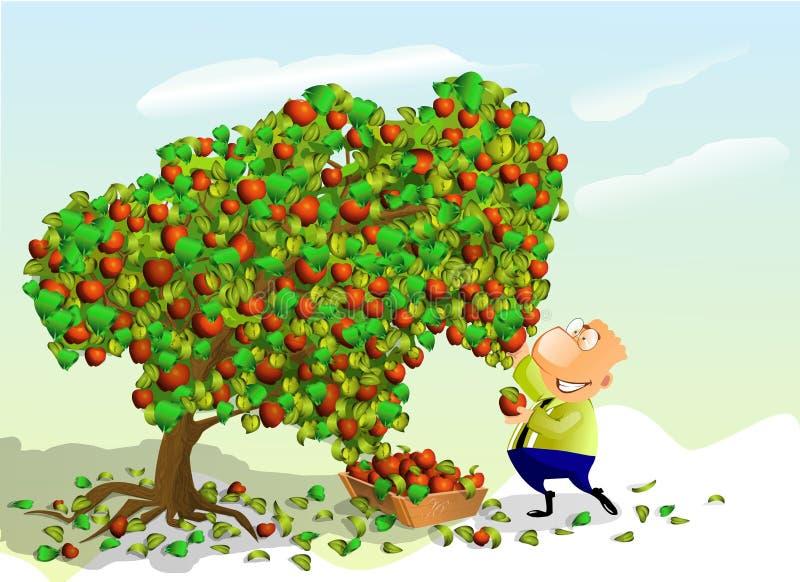 jabłek mężczyzna zrywanie ilustracji