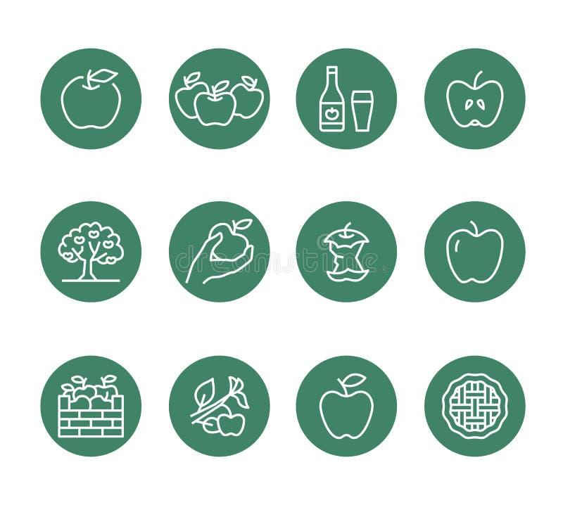Jabłka mieszkania linii ikony Jabłczany zrywanie, jesieni żniwa festiwal, rzemiosło cydru owocowe ilustracje Cienieje znaki dla o royalty ilustracja