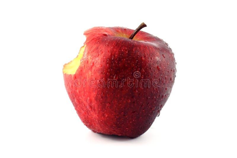 jabłko świeży zdjęcie royalty free
