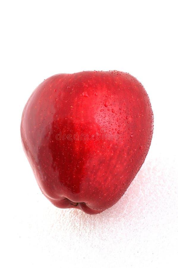 jabłko zdjęcie stock