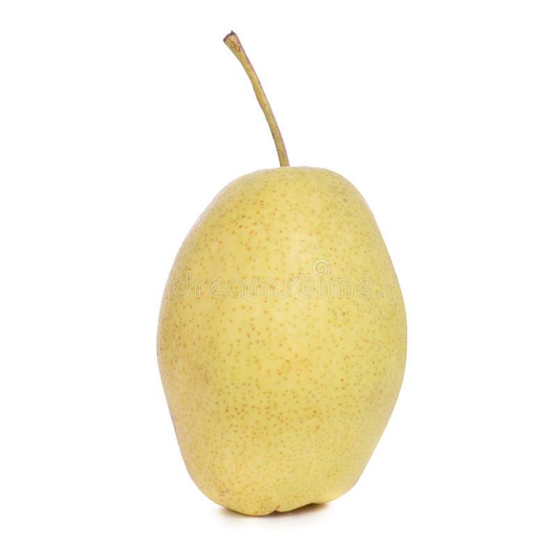 jabłko bonkreta owocowa hybrydowa fotografia stock