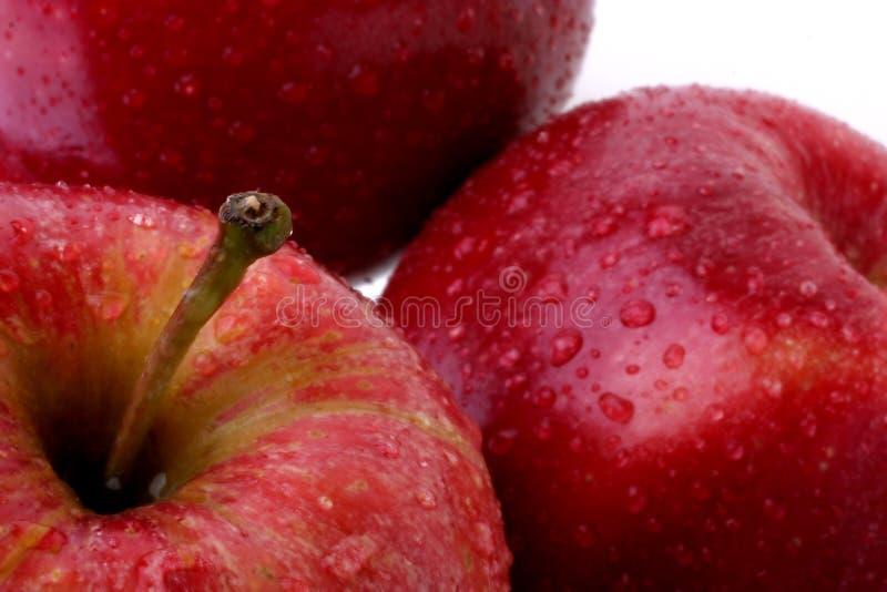 jabłko kropli wody czerwona zdjęcia royalty free