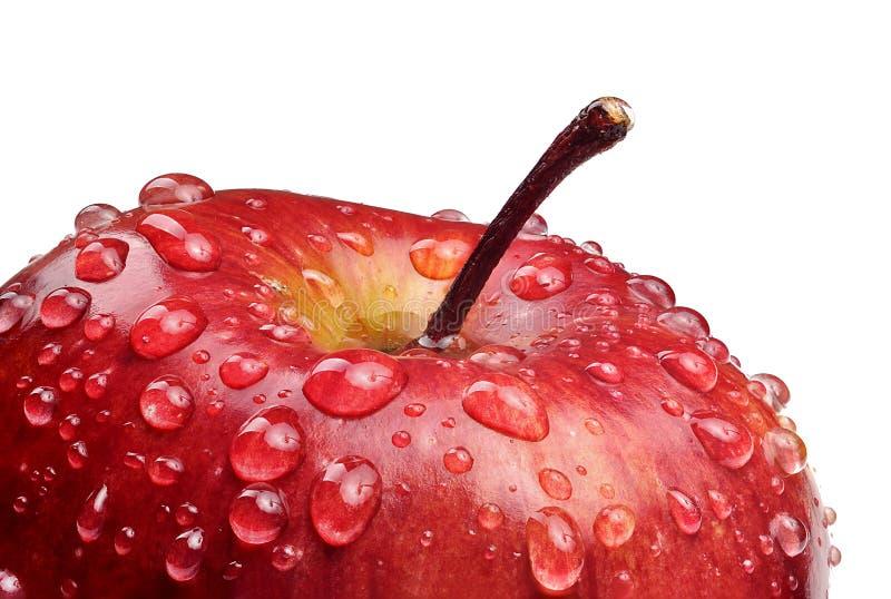 jabłko opuszcza czerwoną wodę zdjęcia stock