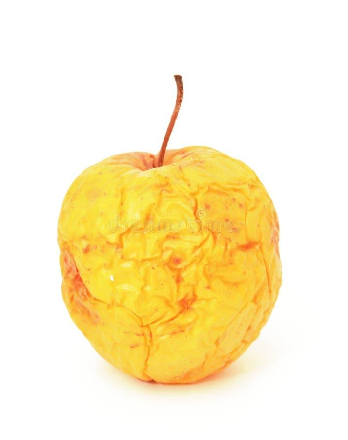 jabłko przegniły obraz royalty free