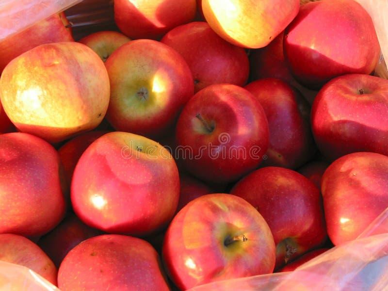 jabłko rolnika jest czerwony rynku obrazy royalty free