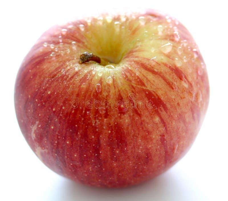 jabłko waterdrops fotografia stock