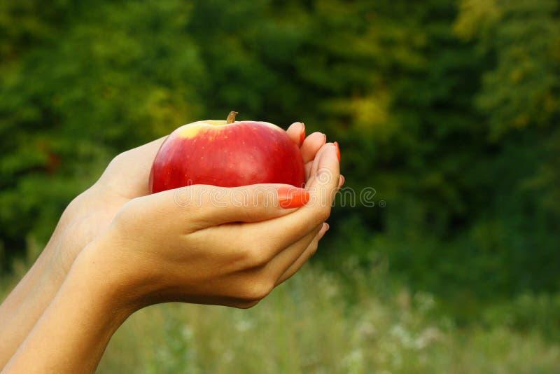 jabłko wręcza s kobiety obrazy royalty free