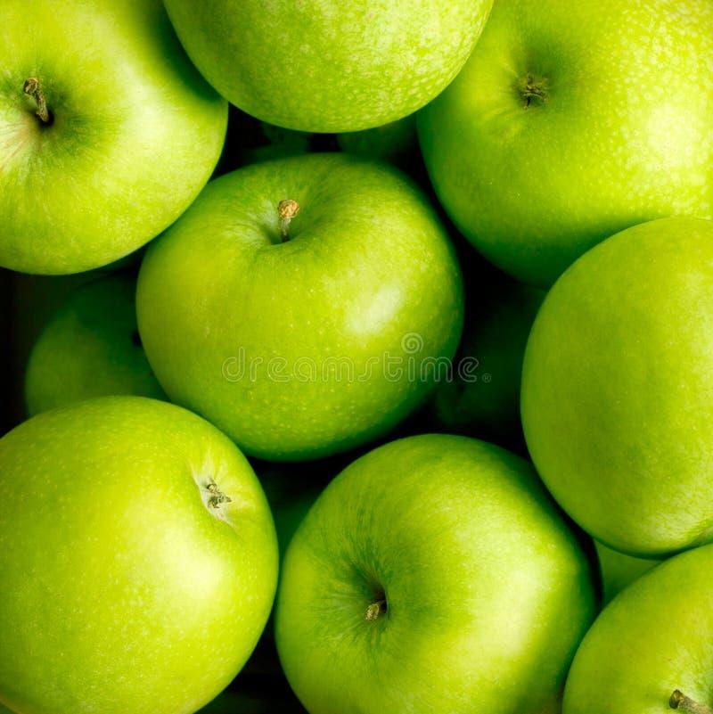 jabłko zieleń obrazy royalty free