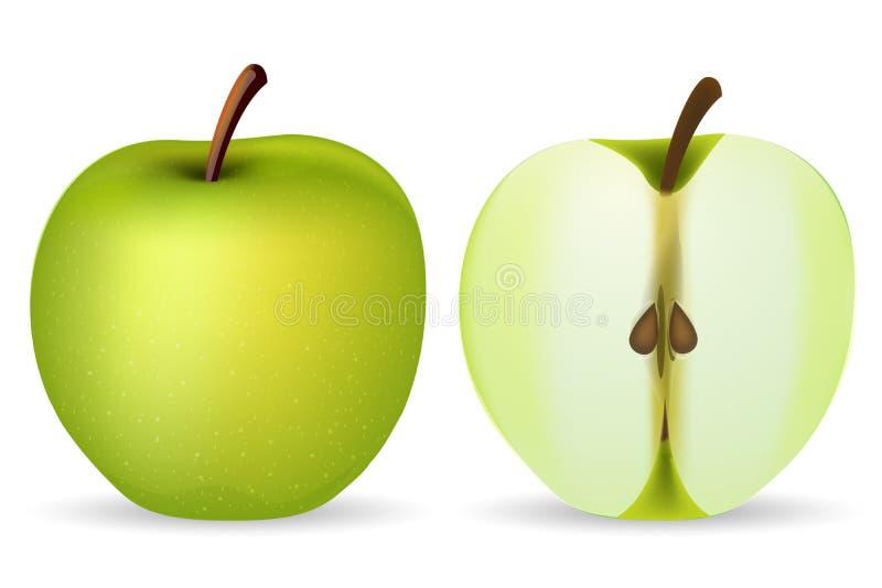jabłko - zieleń ilustracja wektor