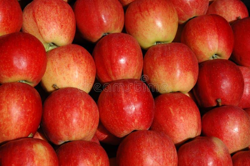 Download Jabłka zdjęcie stock. Obraz złożonej z sprzedażny, kopiasty - 42932
