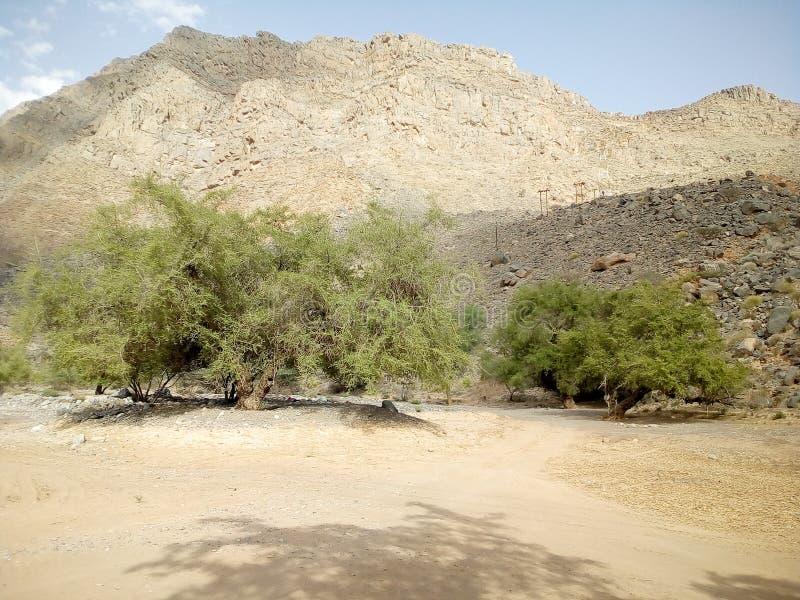 Jabal Akhdar, annonce Dakhiliyah, Oman image stock