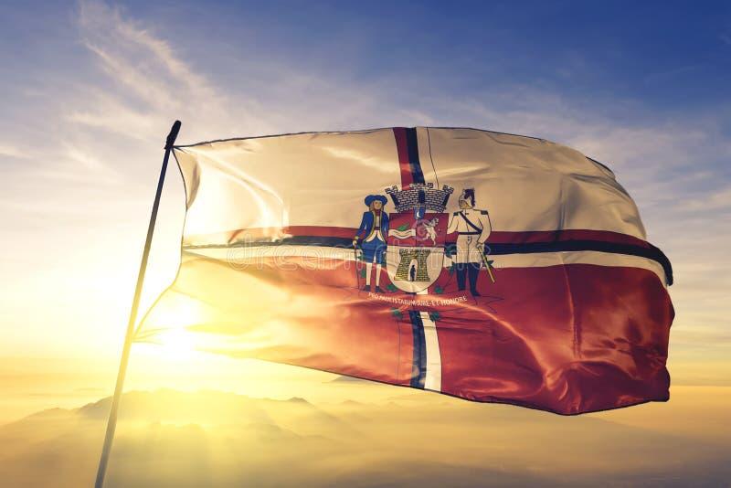 Jacarei von Brasilianischer Fahne, die auf dem obersten Sonnenaufgangsnebel schwingt lizenzfreies stockbild