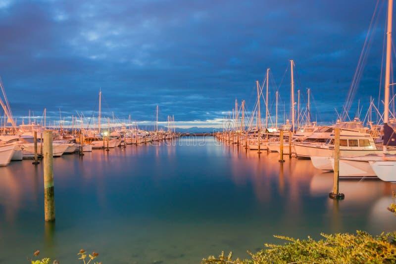 Jachthaven bij nacht, Tauranga Nieuw Zeeland stock afbeelding