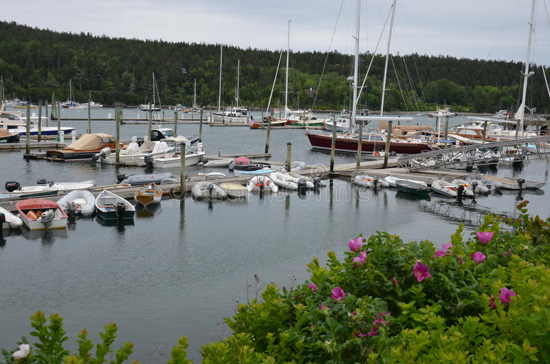 Jachthaven op Maine Coast royalty-vrije stock fotografie