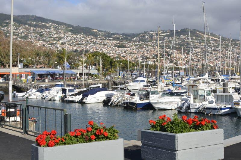 Jachthaven op strandboulevard van Funchal, Madera, Portugal royalty-vrije stock afbeeldingen