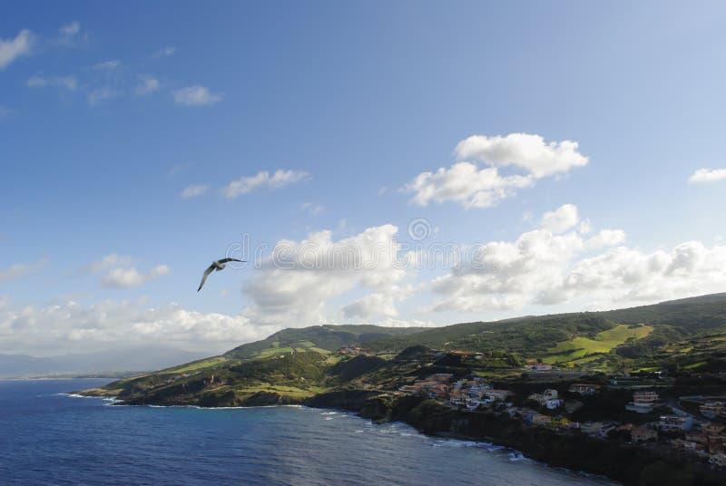 Jachthaven in Sardinige royalty-vrije stock foto