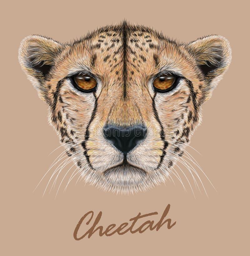 Jachtluipaard dierlijk leuk gezicht Vector Afrikaans wild snel katten hoofdportret Realistisch geïsoleerd bontportret van jachtlu vector illustratie