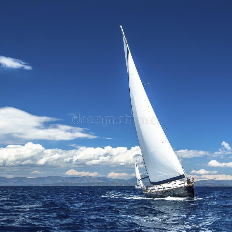 Jachtzeilen met mooie wolkenloze hemel sailing royalty-vrije stock afbeelding