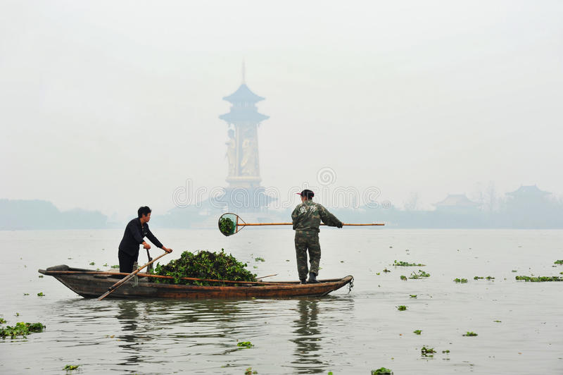 Jacinthe d'eau de excavation en Chine photo libre de droits