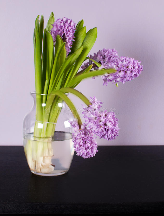 Jacinto de la lila en el florero de cristal en la tabla negra imagenes de archivo