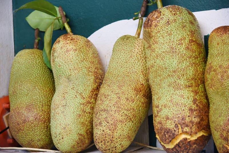 Jack Fruit royaltyfria foton