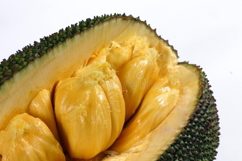Jack-fruit fotografia de stock