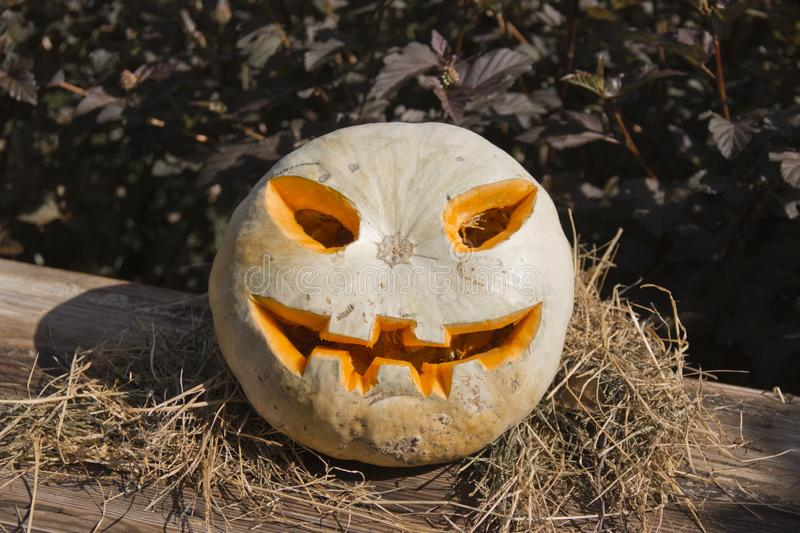Jack O Lantern with carved face sitting on a bed of straw stock photography