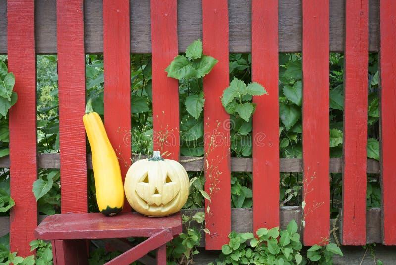Jack-o'-lantern e uno zucchini dorato Fondo rosso del recinto immagini stock libere da diritti