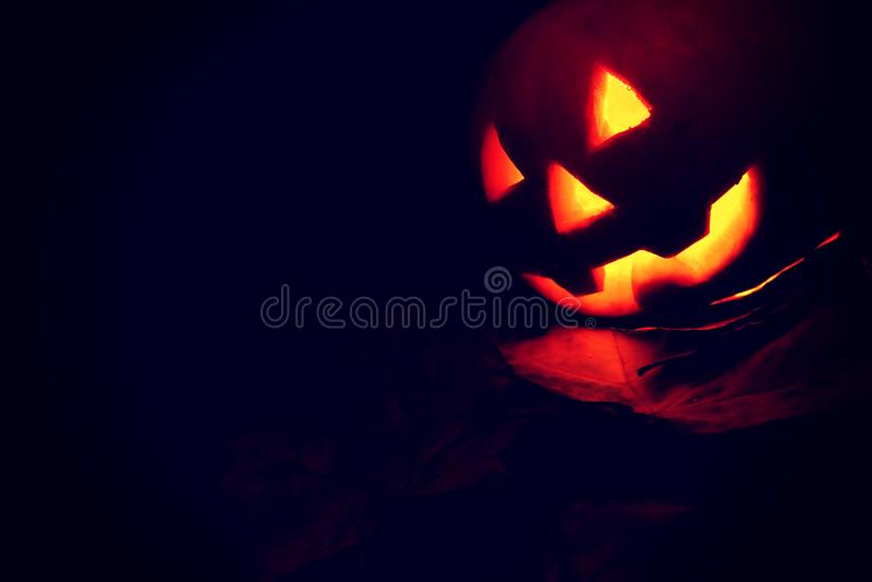 Jack-o`-lantern pumpkin on black background stock image