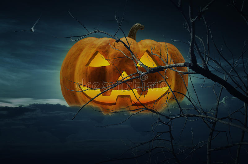 Jack O Lantern pumpkin with dead trees and birds over cloudy night sky, Halloween concept royalty free stock image