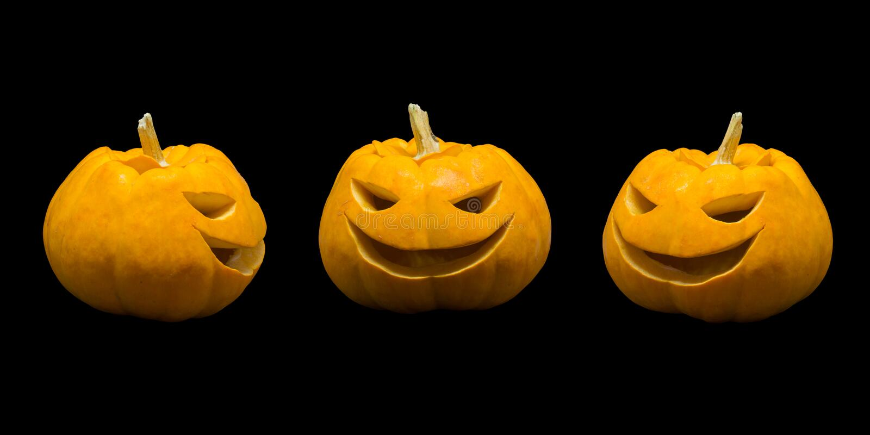 Jack o lantern pumpkin faces on black background.  royalty free stock photo
