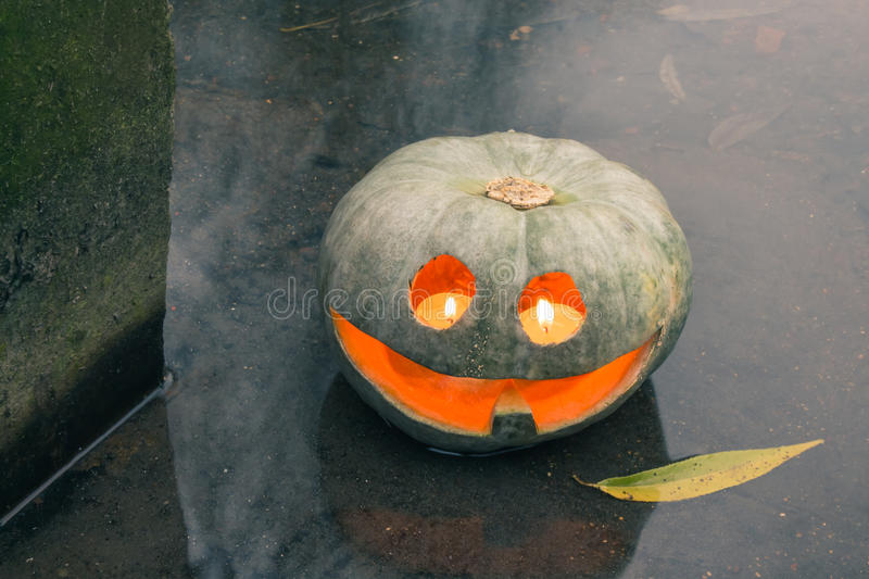 Jack-o-lantern in the water with a willow leaf stock images