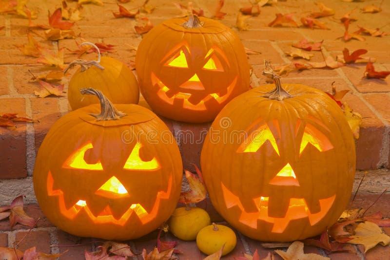 Jack-O-Lanterne di Halloween fotografie stock