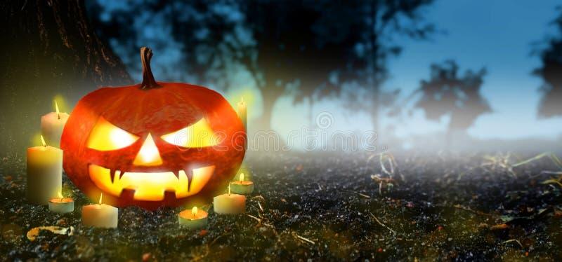 Jack O Lanterns pompoen met kaarsen in het Spooky Night woud - Banner Halloween Scene-achtergrond Copyspace voor tekst stock fotografie