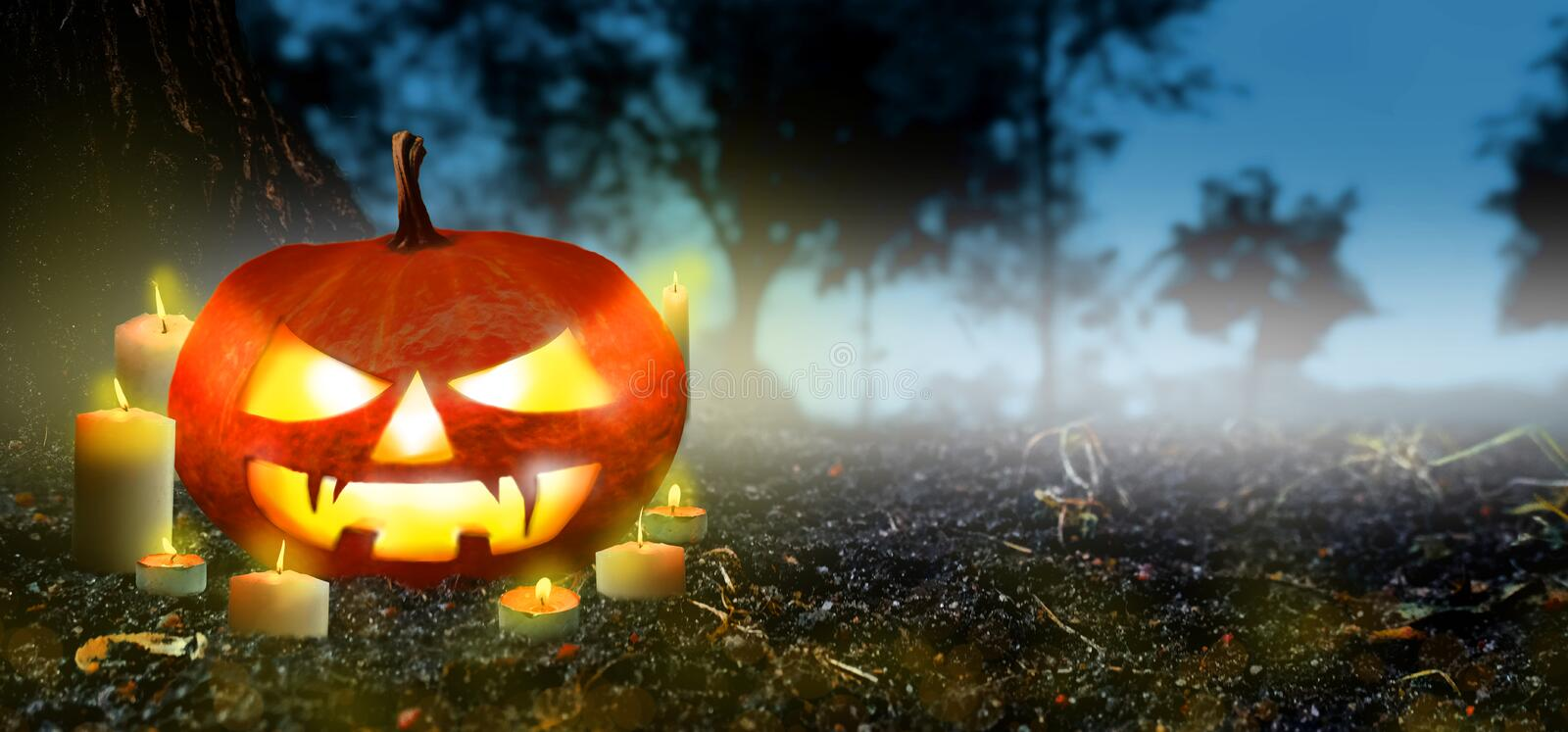 Jack O Lanterns pumpkin Glowing with candles In The Spooky Night forest - Banner. Halloween Scene background. Copyspace for text stock photography